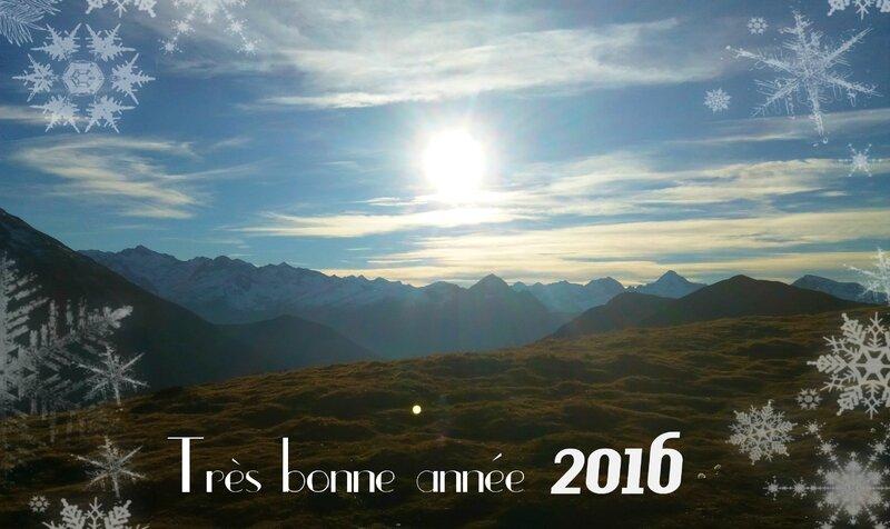 2015_12_30 (41) bis
