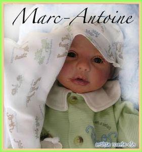 marcantoine01