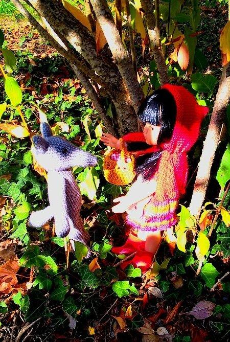 Opale chaperon rouge projet octobre 17 de Louise cliché 08