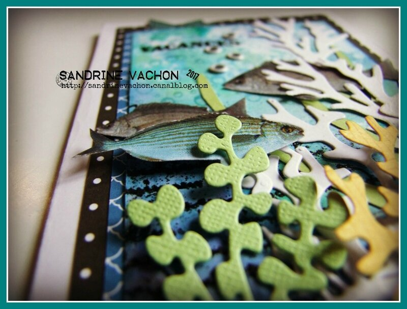 Sandrine VACHON DT blog PCC (5)