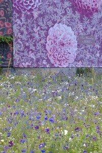 fleurs_devant_ch_teau___wesserling