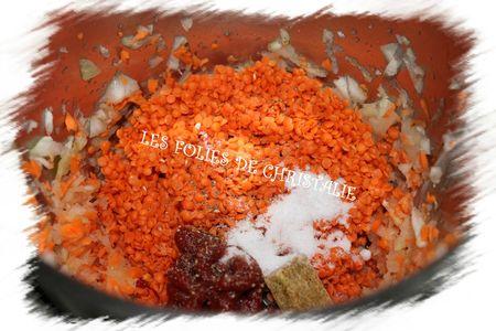 Crème de lentilles corail 2