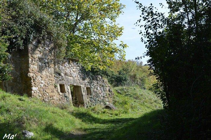 151017_chateau_cornillans_1