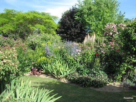 Jardin de Morailles (13)