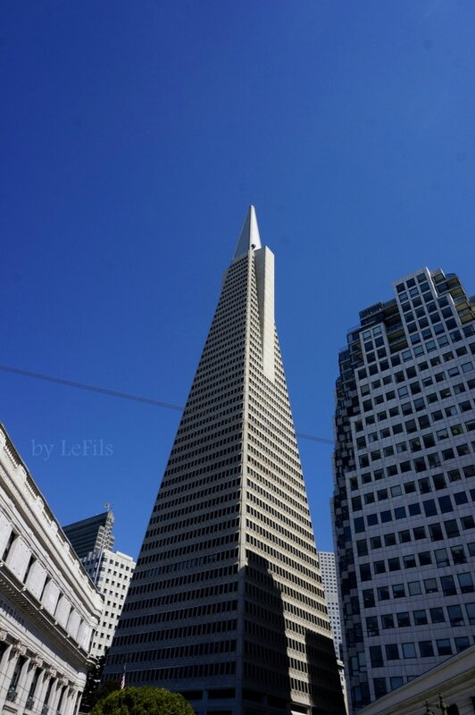 san francisco transamerica pyramid tower