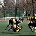 RCP15-RCT-R23