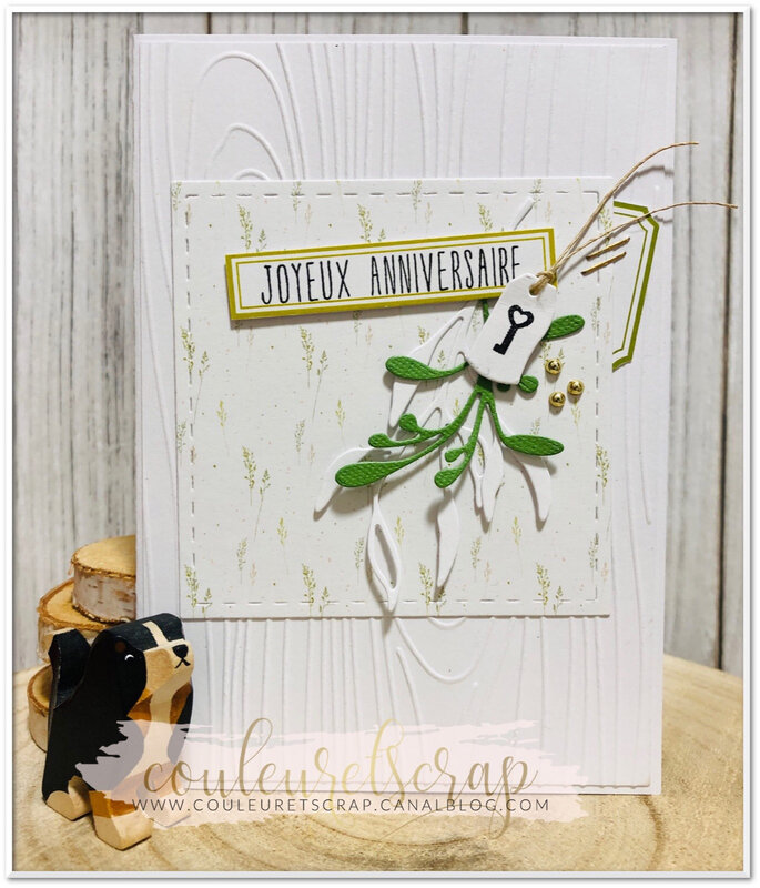 Couleuretscrap_carte_anniversaireMamily_10ansLittle