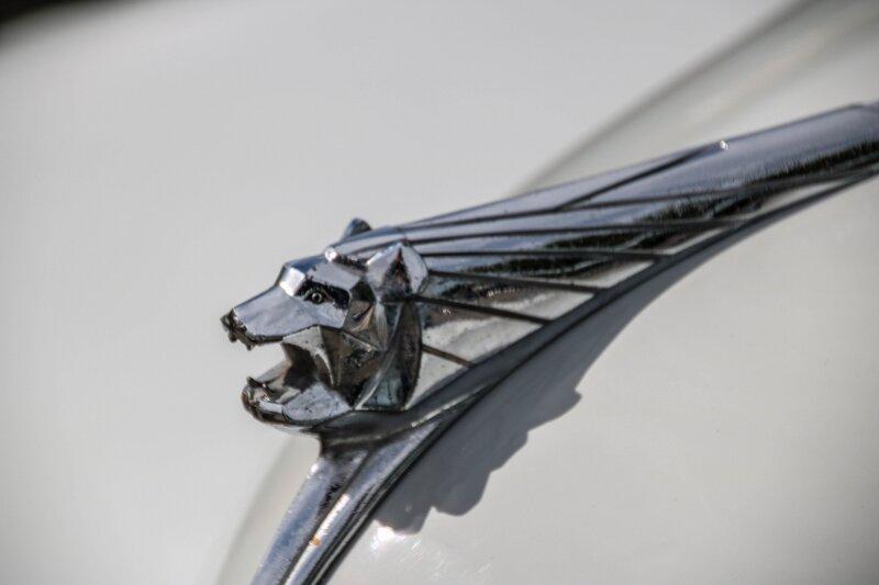 Insigne d'une Peugeot 203