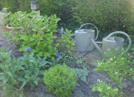 jardin-j