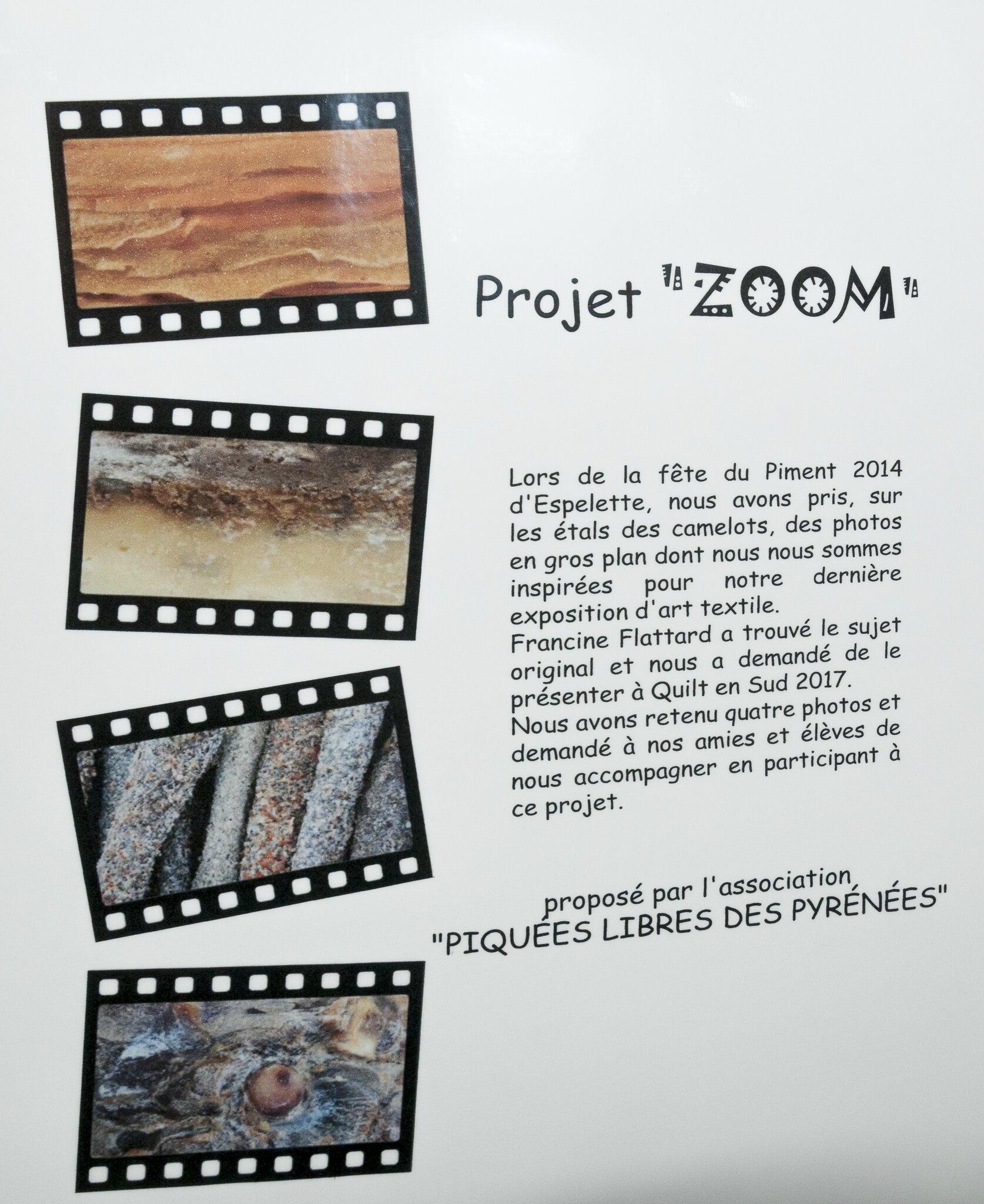 01-QES2017-Expo ZOOM