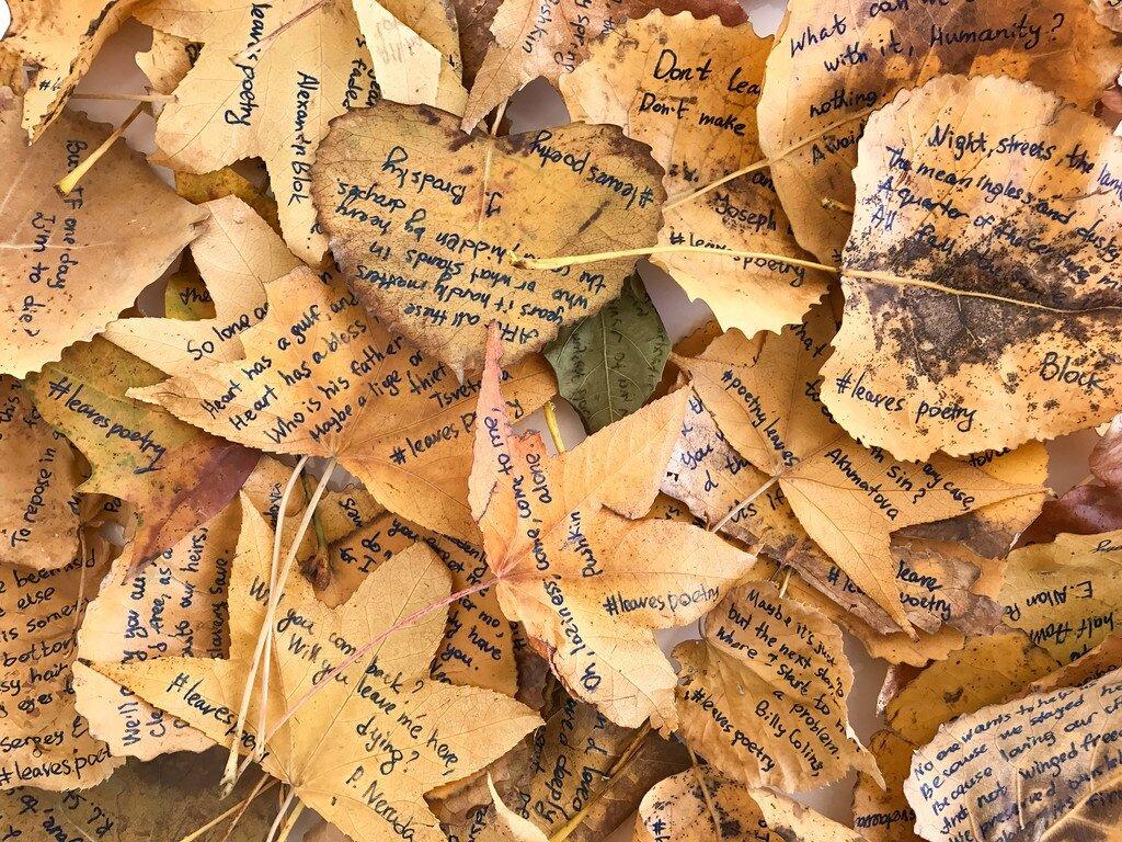 Une New-Yorkaise écrit des poèmes sur des feuilles mortes