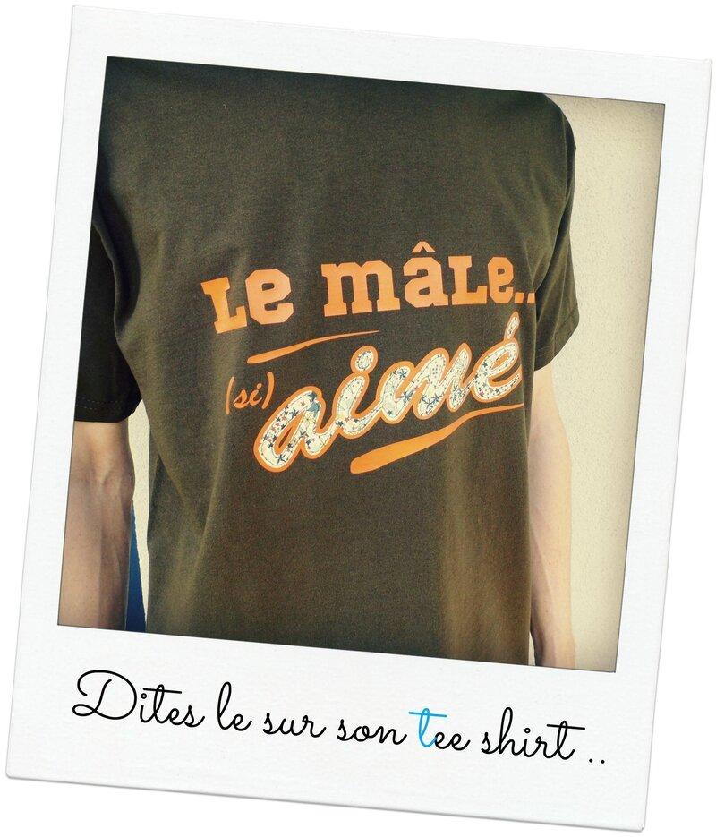 Flex tee shirt Mâle aimé Juin 2014