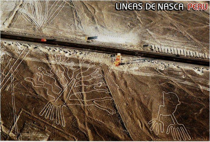 d_Lignes de Nasca688