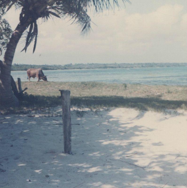Guadeloupe 75-76