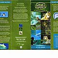 Secret Garden and Dophin Habitat the Mirage Las Vegas (1).jpg