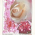 Les roses-dessin et haïku du jour n°204