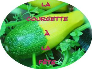 concours_courgette