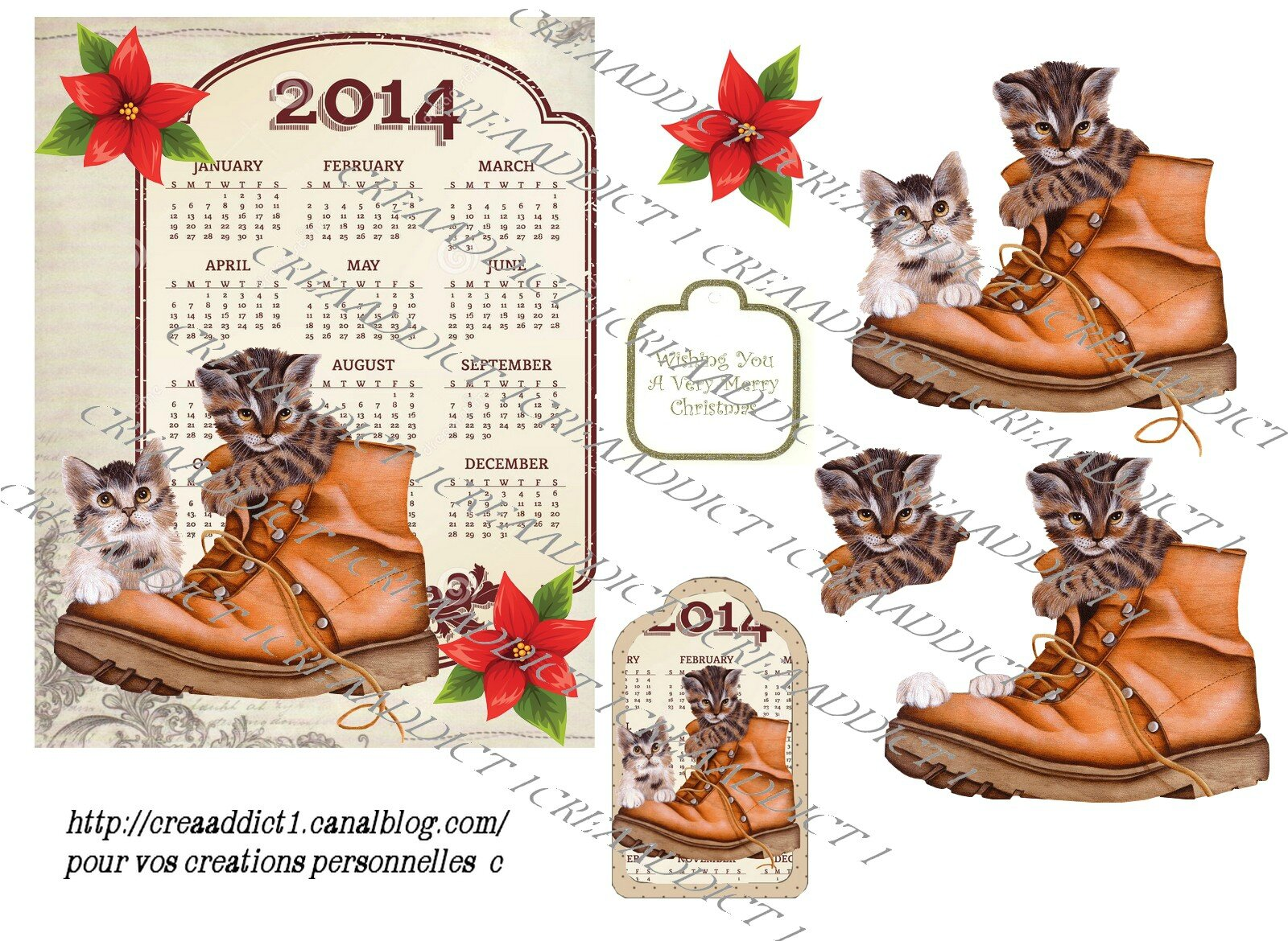 copie calendrier chats chaussure