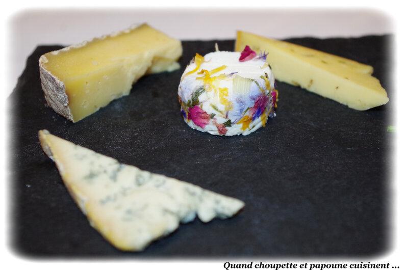 Assiette de dégustation de fromages-8113
