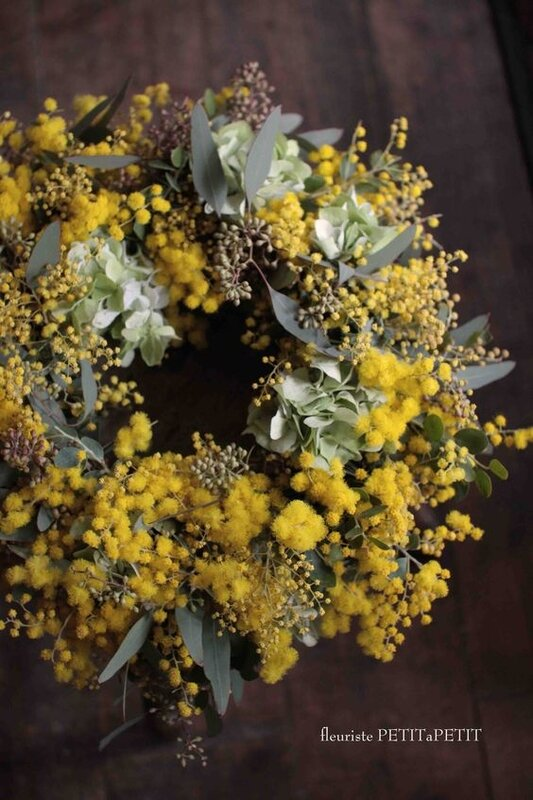 couronne_mimosa