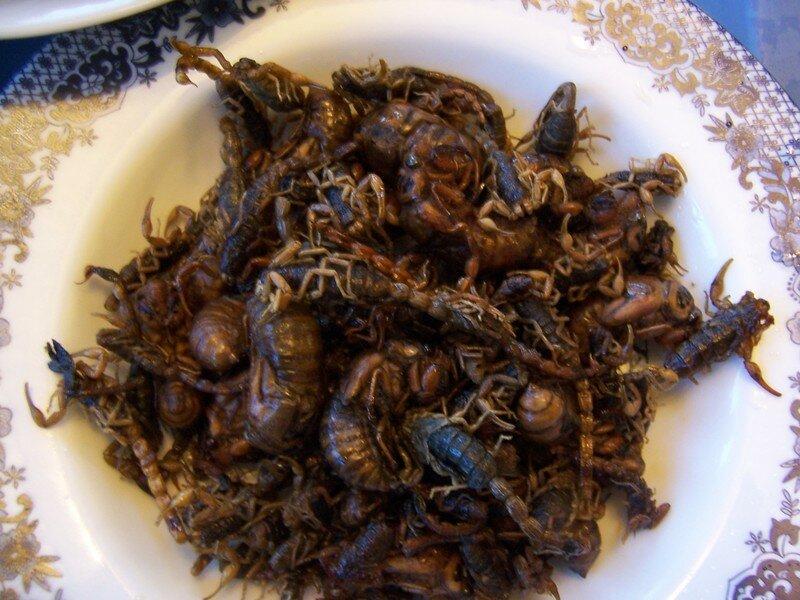 Oh! Des scorpions! Vraiment, fallait pas...