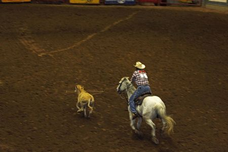 Rodeo_11