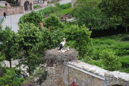 Alsace_du_1_au_4_juin_2010_132