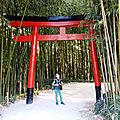 Mercreding à la bambouseraie