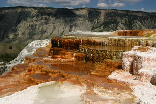 yellowstone_mammoth_hot_springs_wy185