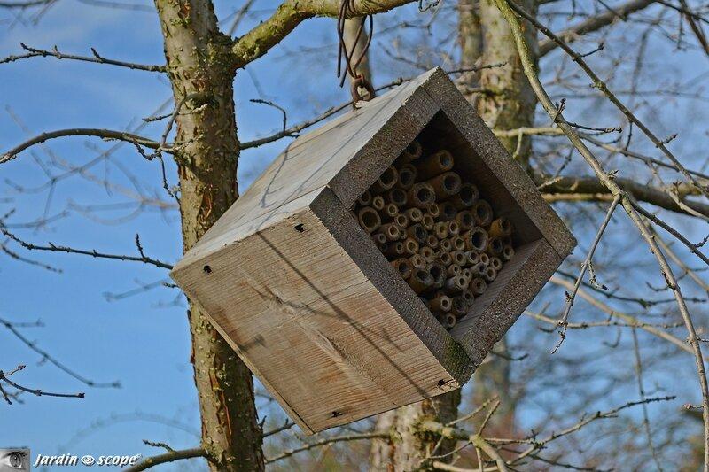 installer une maison des insectes pour les attirer au jardin le jardinoscope cot pratique. Black Bedroom Furniture Sets. Home Design Ideas