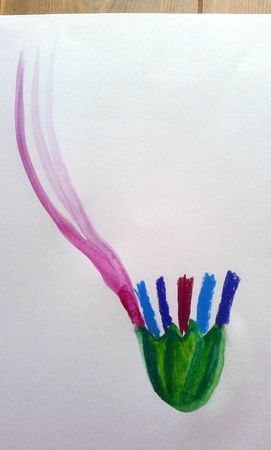 87_Fleurs_Fleurs en vase (51)