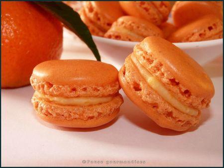 Macarons clémentine et chocolat blanc (21)