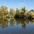 962 Les belles couleurs d'automne