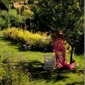 Windows-Live-Writer/jardin_D005/DSCF3982_thumb