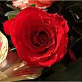 Je t'offre des fleurs