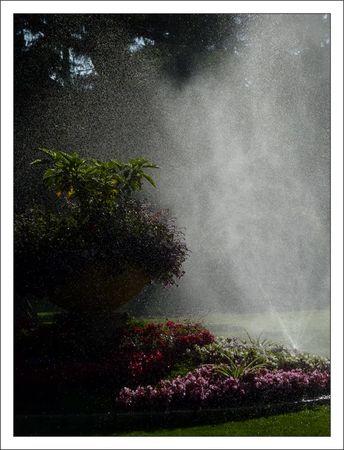 Loches_jardin_arrosage