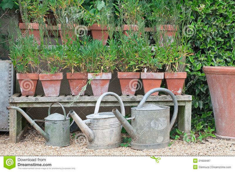 jardin-anglais-de-maison-21658487