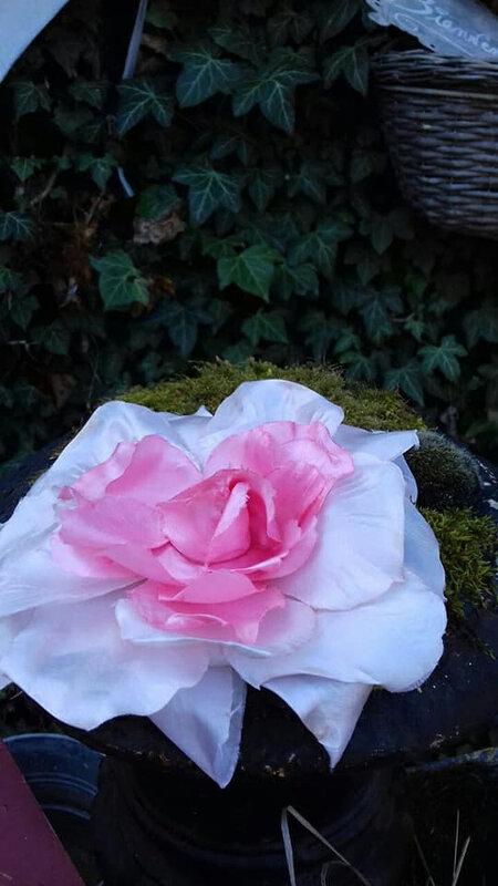 rosesoie1