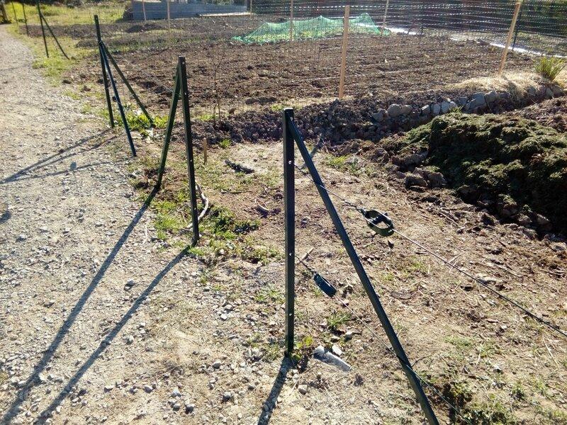 Une clôture en grillage pour mon jardin - Le potager d\'Irène