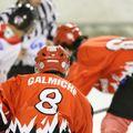 Hockey 732