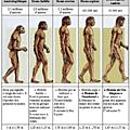 Parcourir le chemin de l'évolution