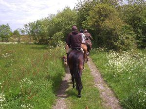 Rando Baie 2012 cheval (24)