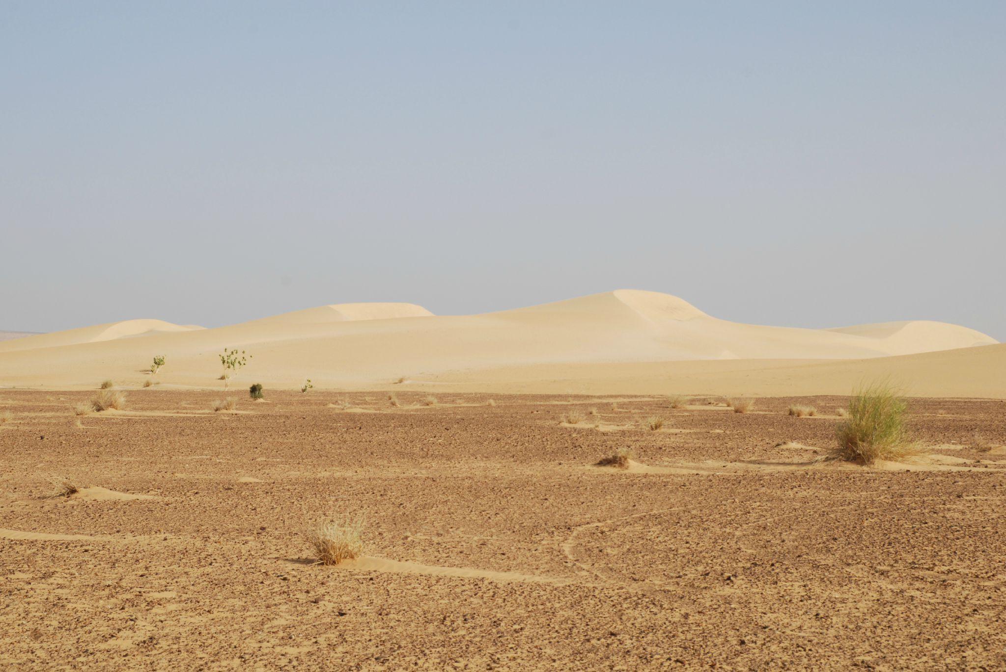 mauritanie et mali 2009 073