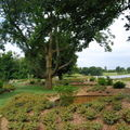 jardins suspendus (8)