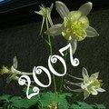 tout 2007