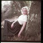 1953-09-02-LA-Laurel_Canyon-Tree_Sitting-021-1a