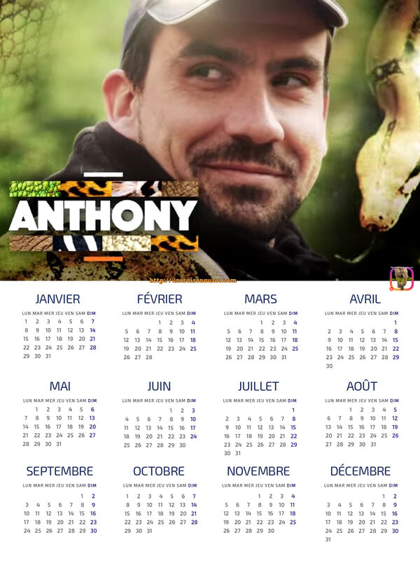 ANTHONY__Pich_1_CALENDRiER_2018