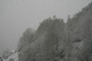 neige-du-15-avril-2012