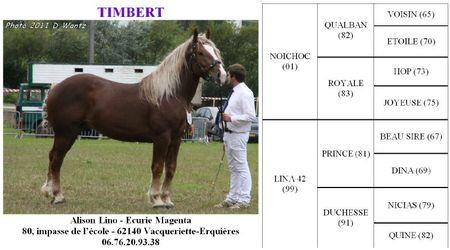 Timbert