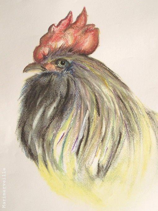 Tête de coq, crayons de couleur